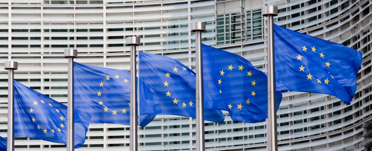 Europaflaggen wehen an Fahnenmasten vor einem Gebäude.