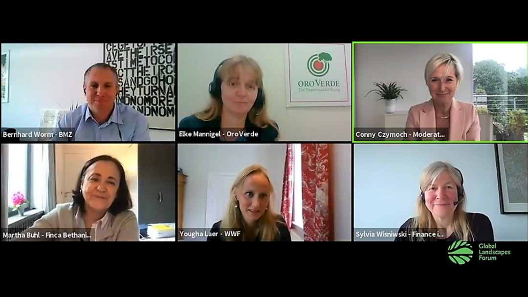 Web Ex Bild mit den Teilnehmer