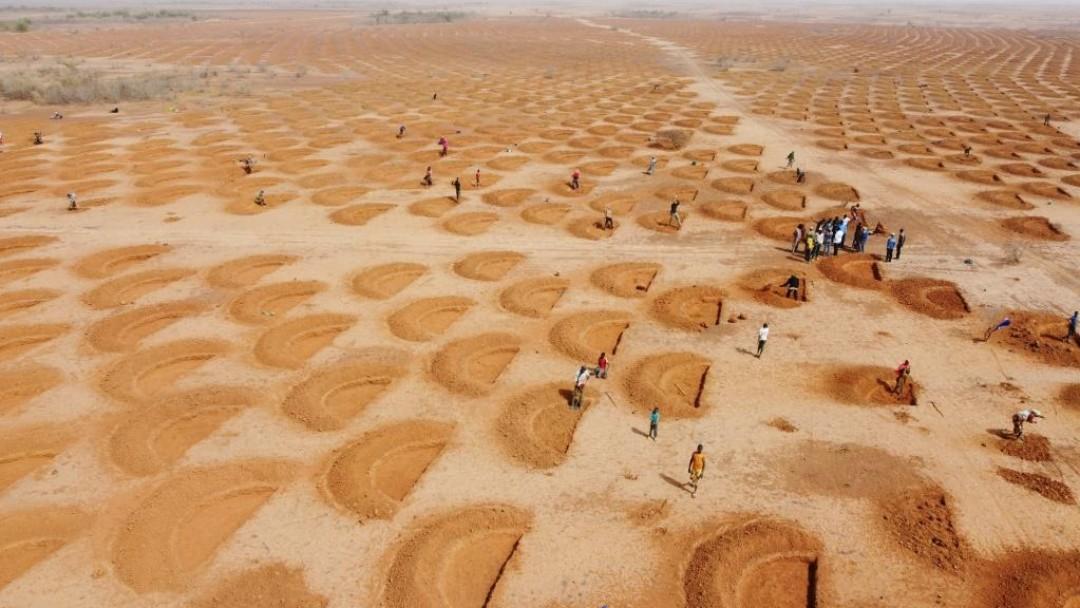 Sand mit halbkreisförmigen Muster auf denen mehrere Menschen laufen, Perspektive von oben.