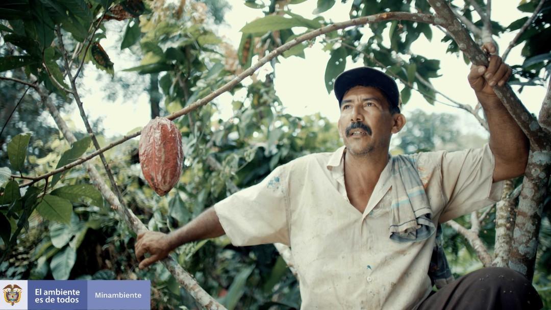 Landwirt Don Albino sitzt vor einem seiner Kakaobäume