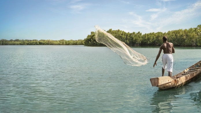 Fisherman throwing out his net from his boat