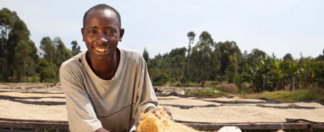 A man working with coffee beans