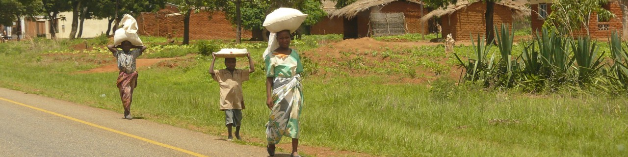 Two women and one child carry home bags with food on their heads.