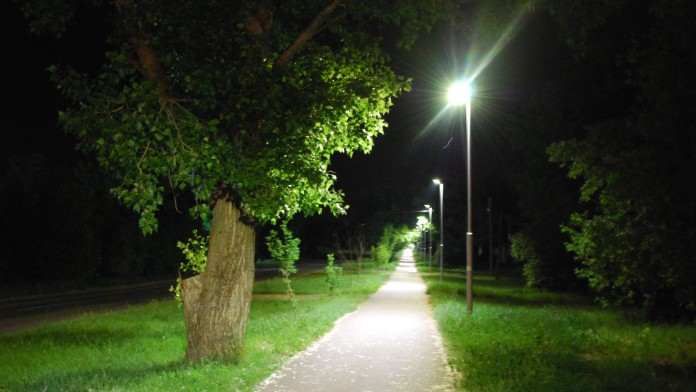 Illuminated path at night with trees at the edge.