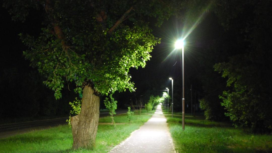 Nächtlicher, beleuchteter Weg mit Bäumen am Rand.