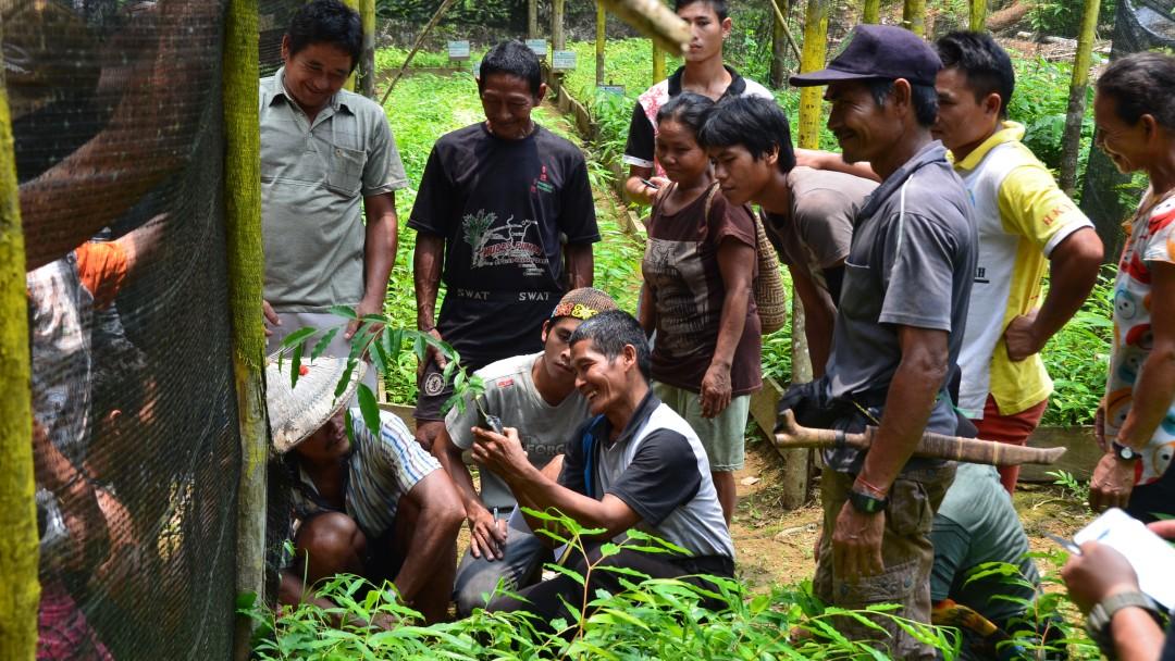 Indonesische Menschen beim Pflanzenbau