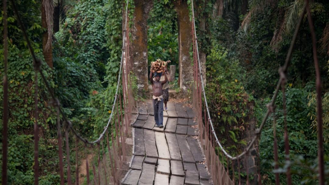 Personen transportieren Feuerholz über eine Hängebrücke im Urwald