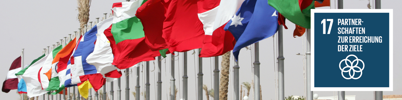 Verschiedene Flaggen, daneben das Icon zu SDG 17 - Partnerschaften zur Erreichung der Ziele