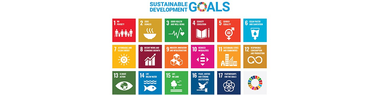 Sustainable Development Goals of the UN