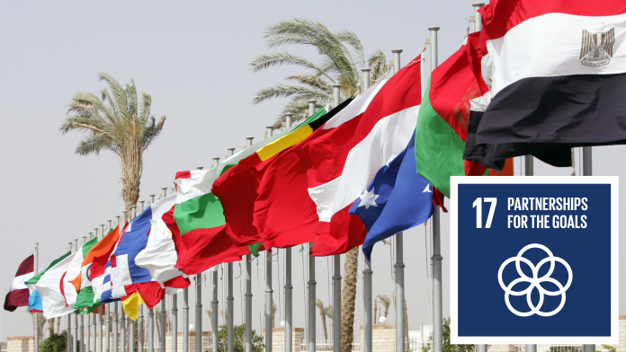 Various flags; next to that the SDG 17 icon - partnerships for the goals
