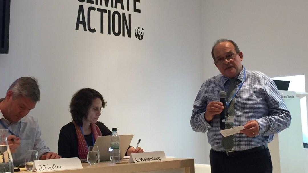 Moerator und Panelisten beim Side Event zum Thema Kohlenstoffspeicher auf der COP23