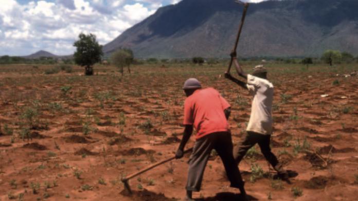 Bewässerung am Mount Kenia